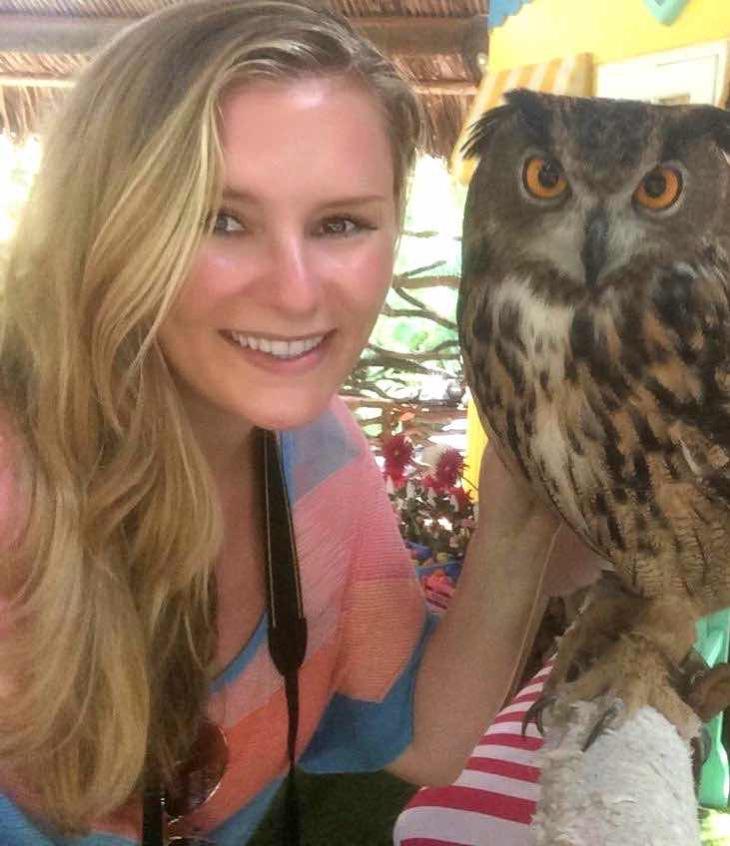 miami owl