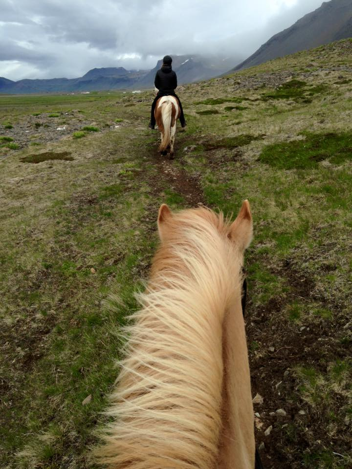 Horseback riding through volcanic fields at Kast Guesthouse