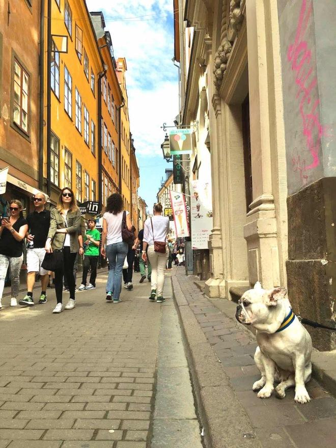 Sweden local