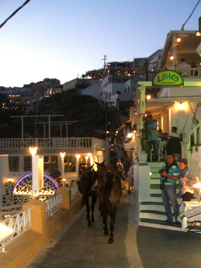 Mules of Fira santorini Greece