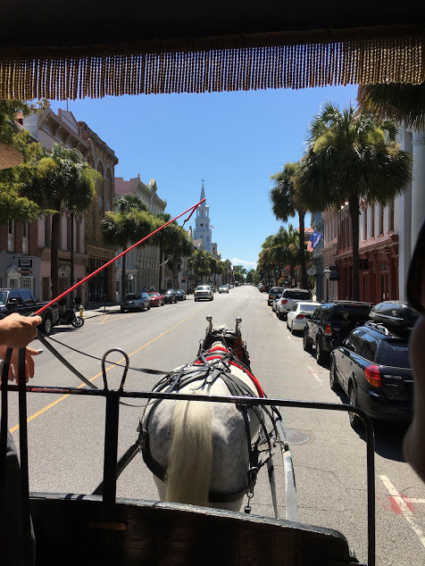 Old South Carriage Tour in Charleston, SC