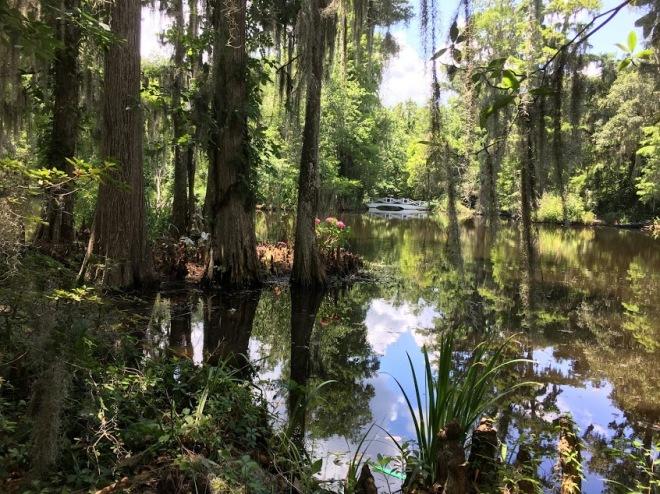 Magnolia Plantations and Gardens in Charleston, South Carolina